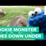 Cookie Monster Goes From Sesame Street to Down Under