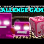 Minecraft: VALENTINE WITHER CHALLENGE GAMES – Lucky Block Mod – Modded Mini-Game