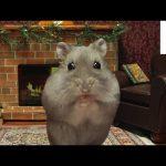Miniature Hamster Yule Log in 4K