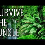 How to Survive the Jungle – EPIC HOW TO